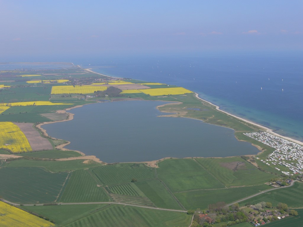 Das NSG Schwansener See ist ein wichtiges Nahrungshabitat