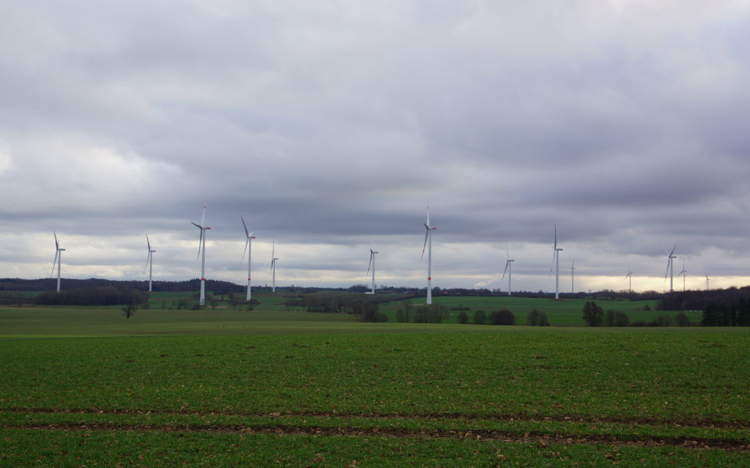 Auch NABU-Eckernförde nimmt Stellung zu geplanten Winkraftanlagen in Holtsee