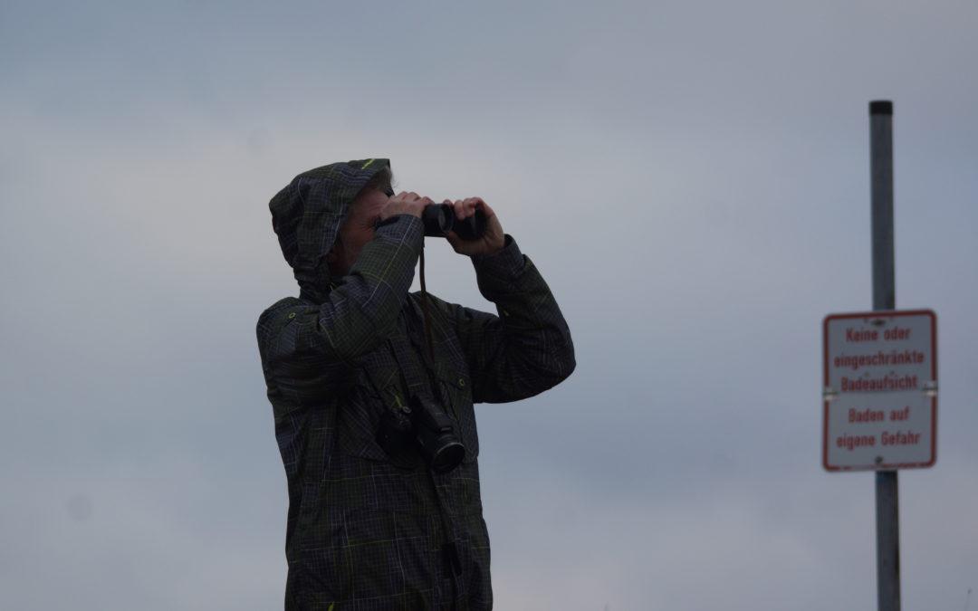 Montag, 7. Oktober: Fortführung der Bildervortragsreihe in Barkelsby: Wolfgang Herda zeigt die Vogelwelt auf Hooge, Amrum und Helgoland