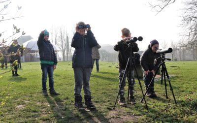 Seeadlerjugend bewundert Bruterfolg in Schleswig
