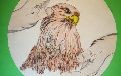 Kreatives Basteln für den Seeadlerschutz