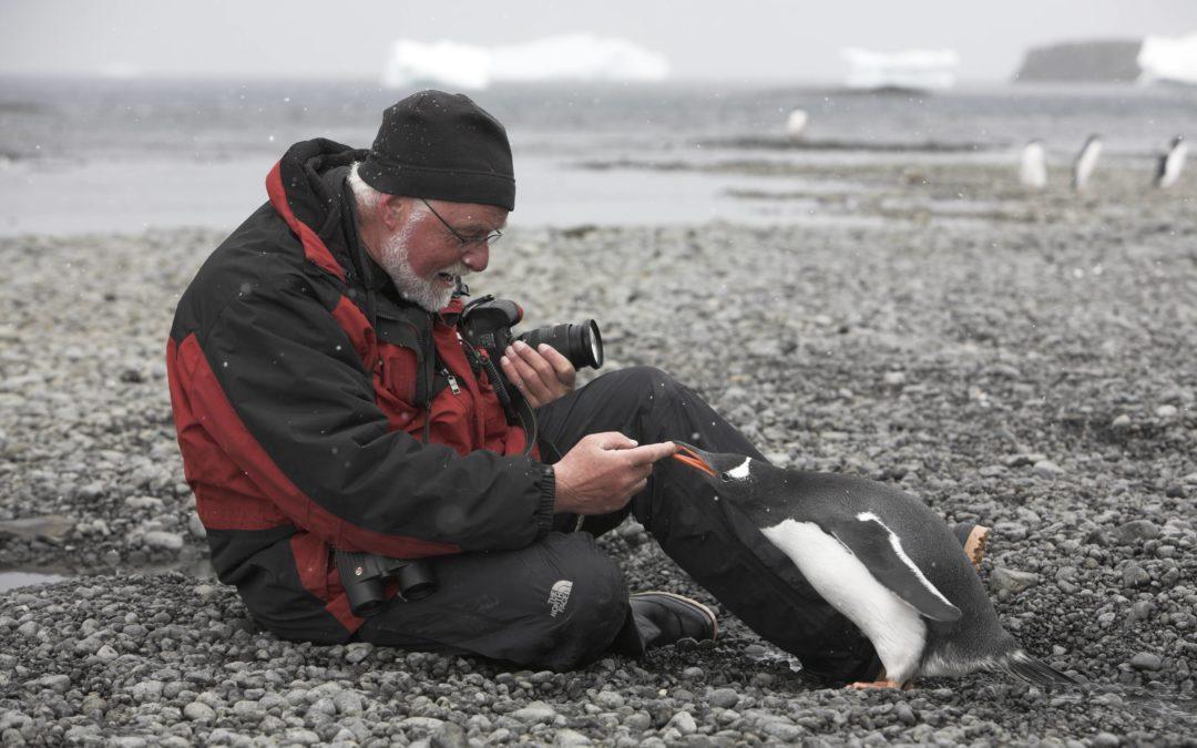 Bildervortrag Antarktis – Königreich der Pinguine und Robben